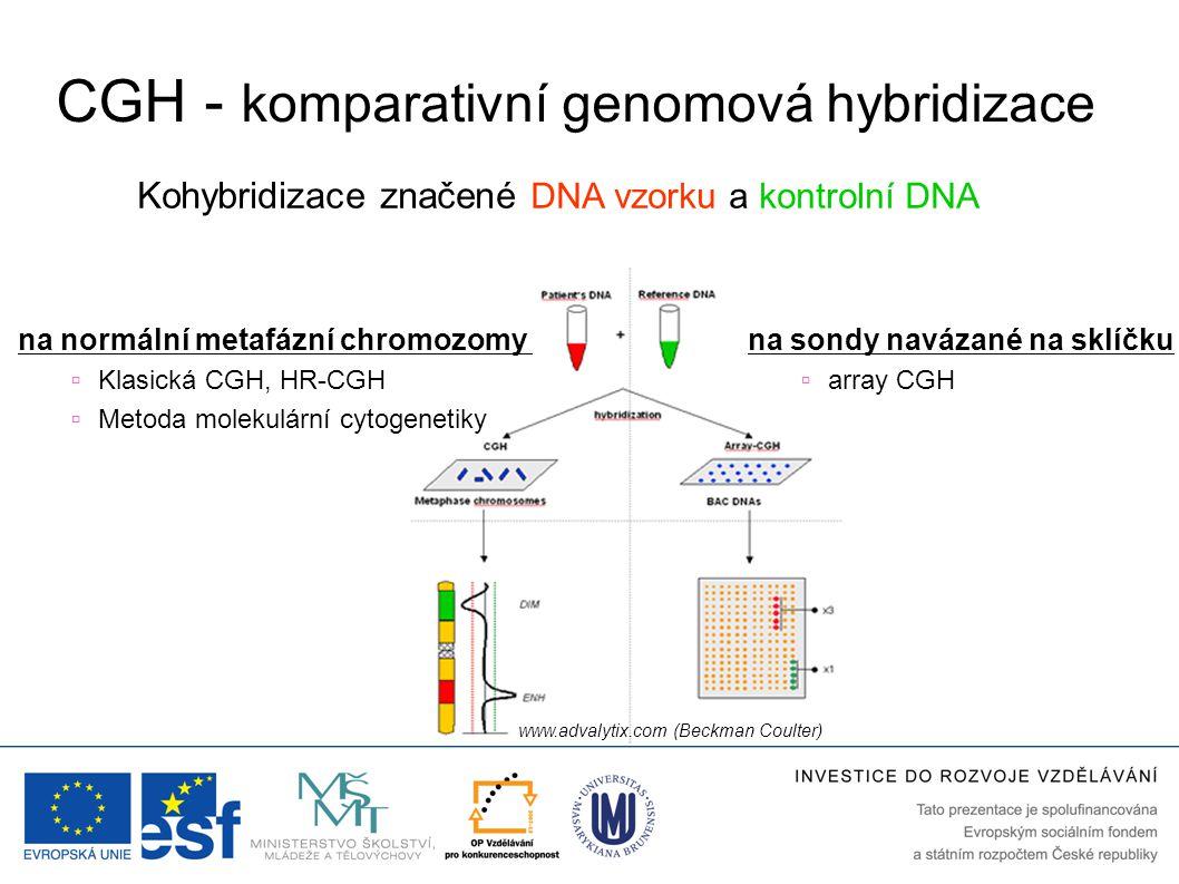 CGH - komparativní genomová hybridizace