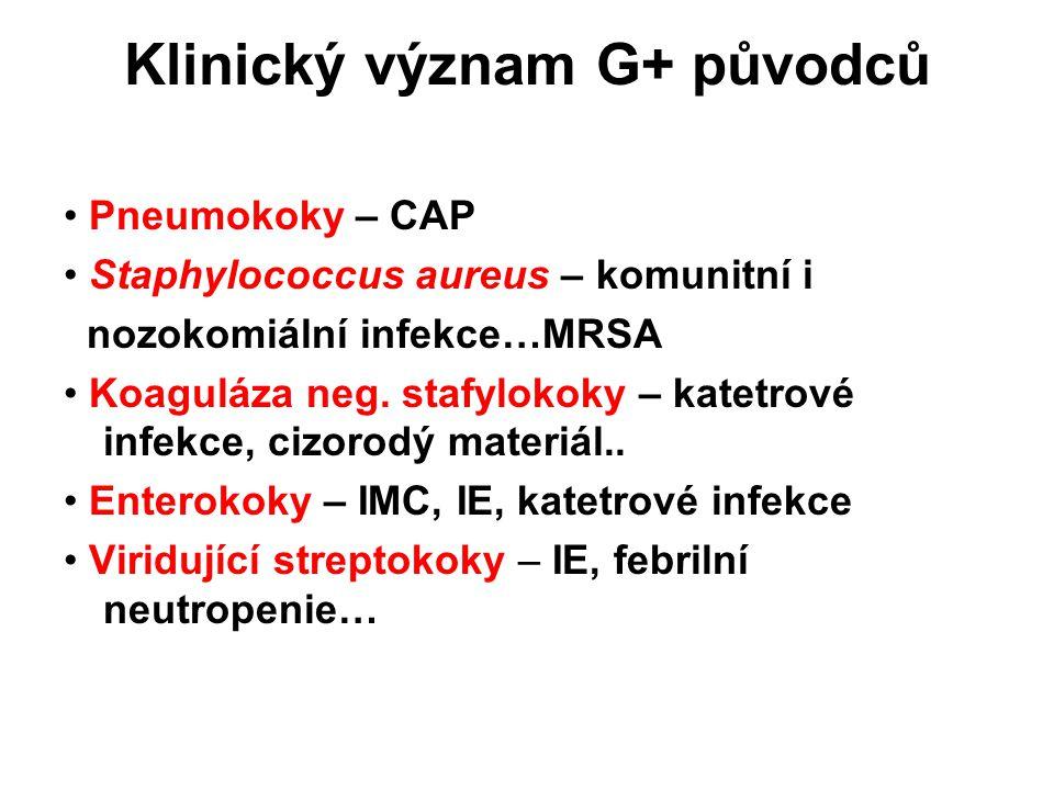 Klinický význam G+ původců
