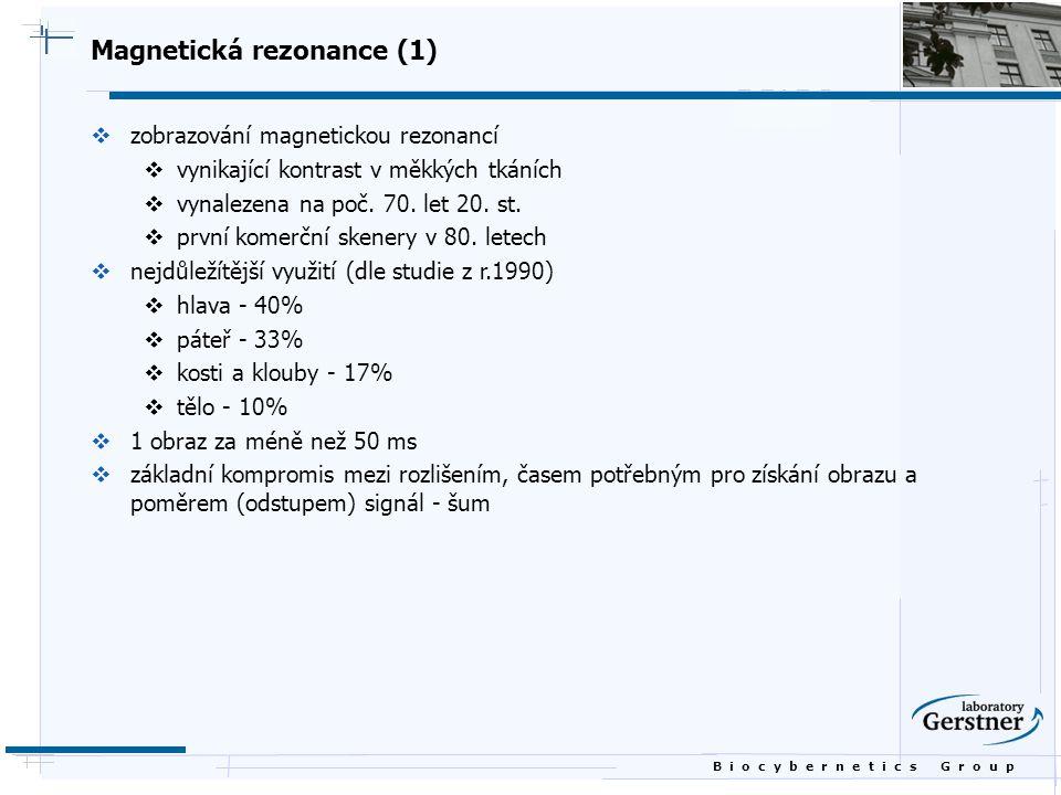 Magnetická rezonance (1)