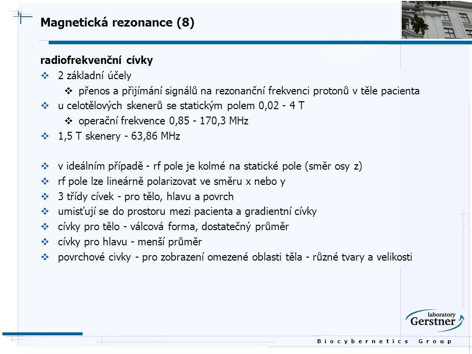Magnetická rezonance (8)