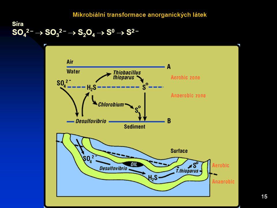 Mikrobiální transformace anorganických látek