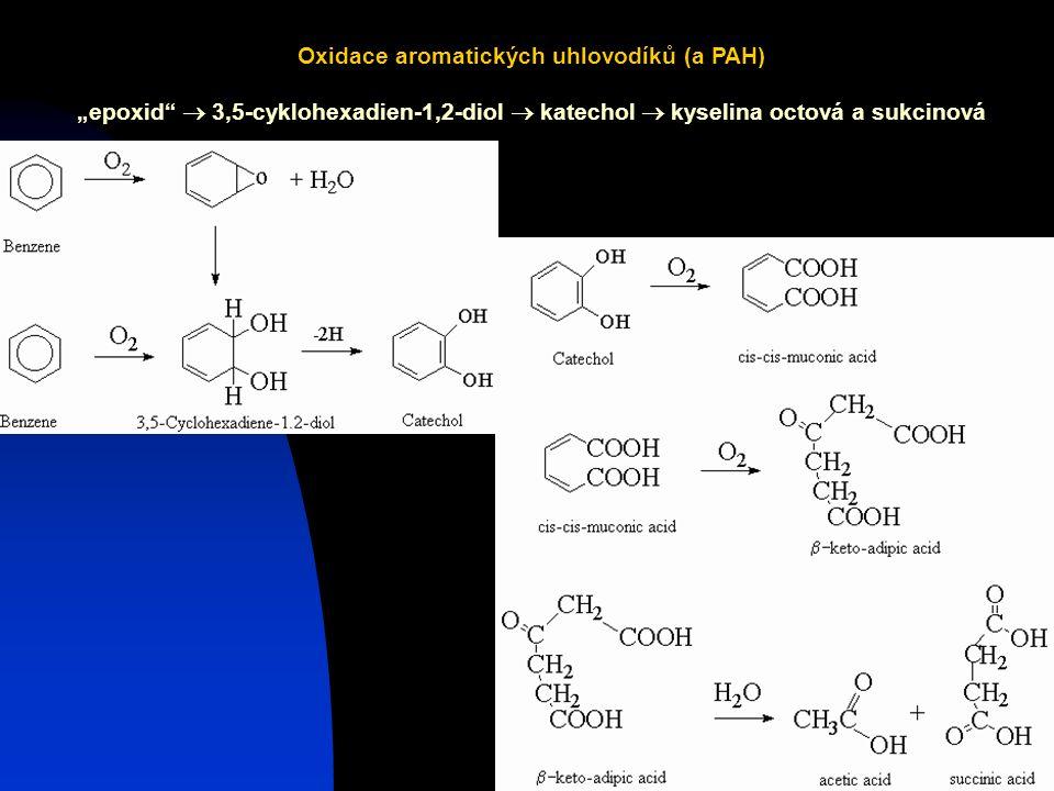 Oxidace aromatických uhlovodíků (a PAH)