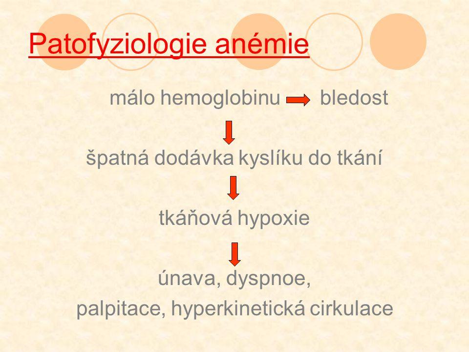 Patofyziologie anémie
