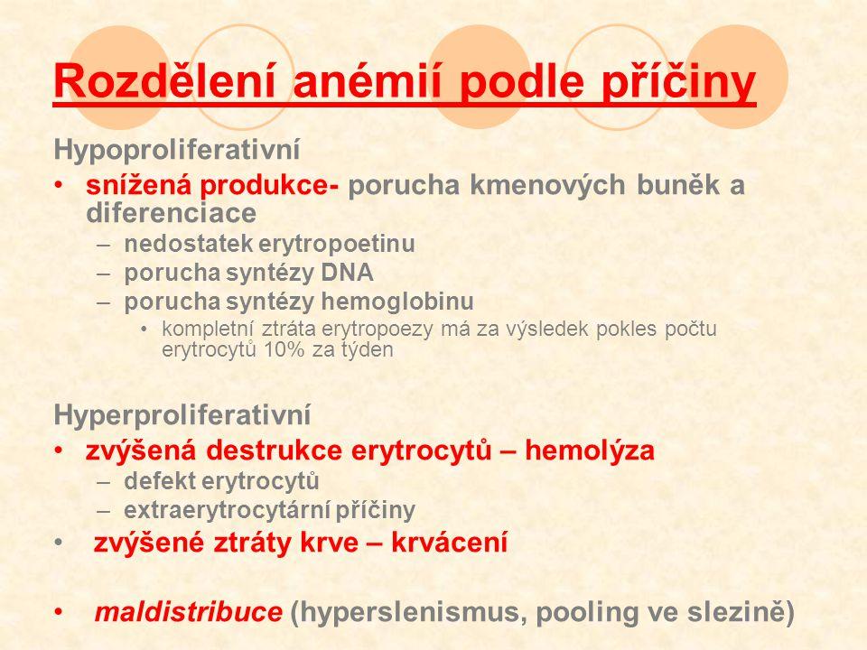 Rozdělení anémií podle příčiny
