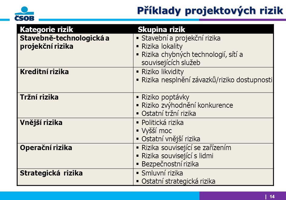 Příklady projektových rizik