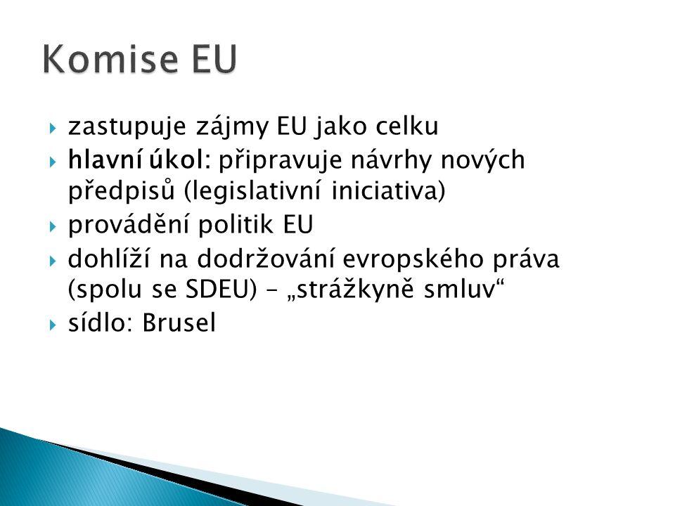 Komise EU zastupuje zájmy EU jako celku