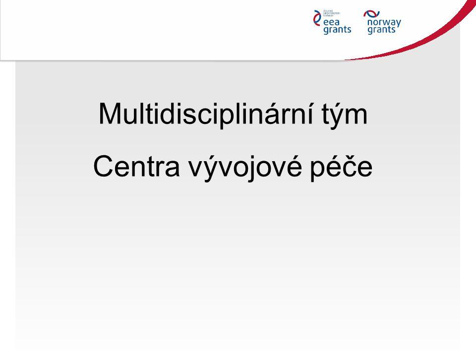 Multidisciplinární tým Centra vývojové péče