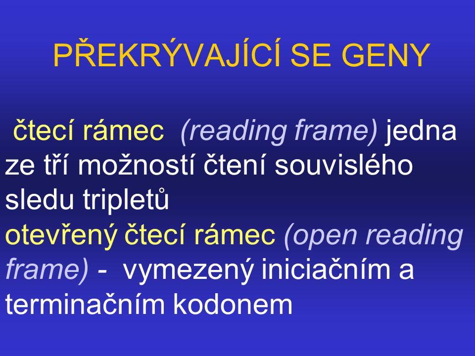 PŘEKRÝVAJÍCÍ SE GENY čtecí rámec (reading frame) jedna ze tří možností čtení souvislého sledu tripletů otevřený čtecí rámec (open reading frame) - vymezený iniciačním a terminačním kodonem