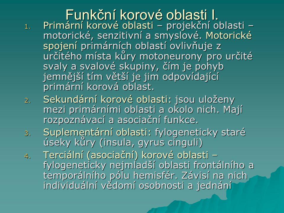 Funkční korové oblasti I.