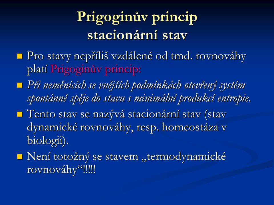 Prigoginův princip stacionární stav
