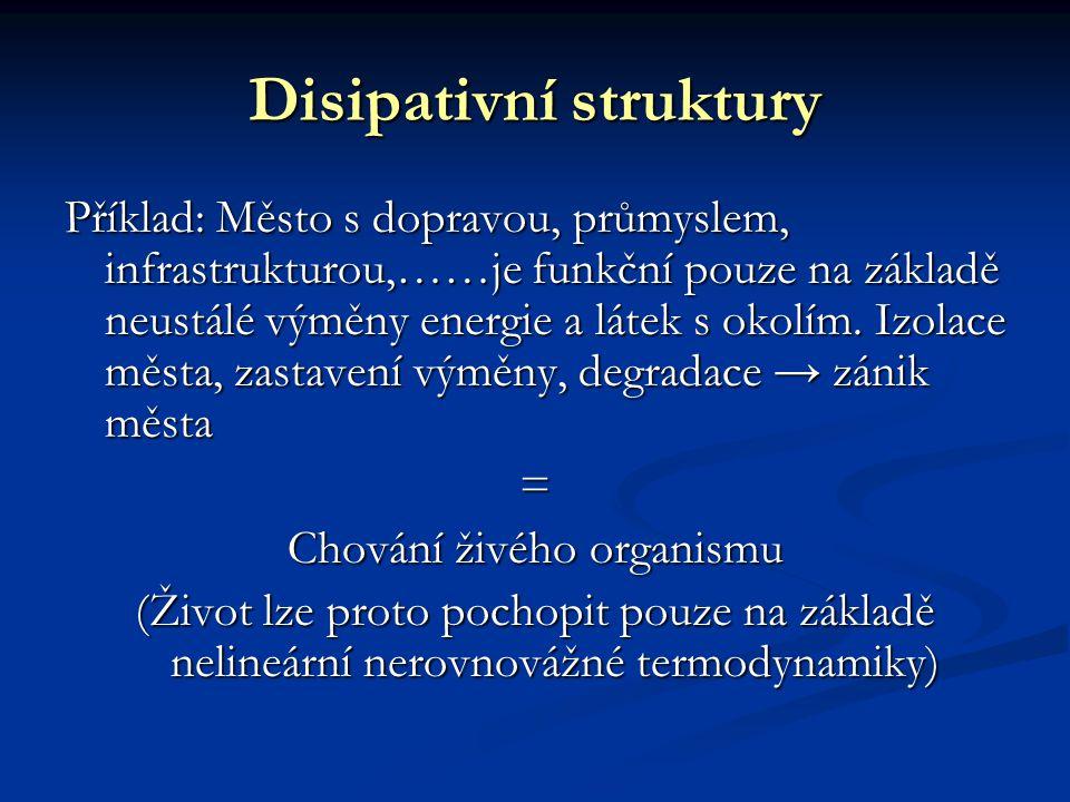 Disipativní struktury