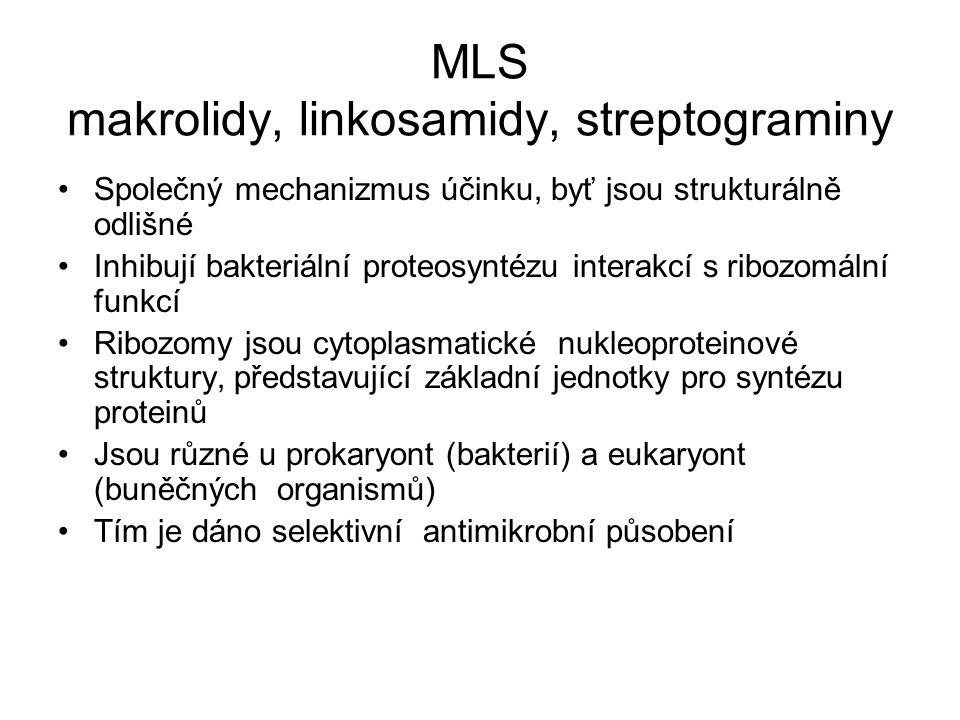 MLS makrolidy, linkosamidy, streptograminy