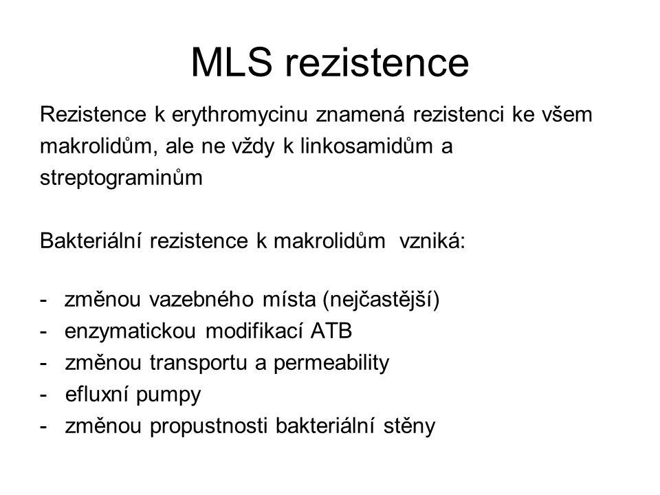 MLS rezistence Rezistence k erythromycinu znamená rezistenci ke všem