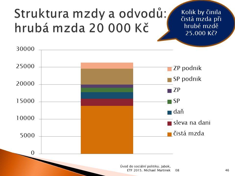 Struktura mzdy a odvodů: hrubá mzda 20 000 Kč