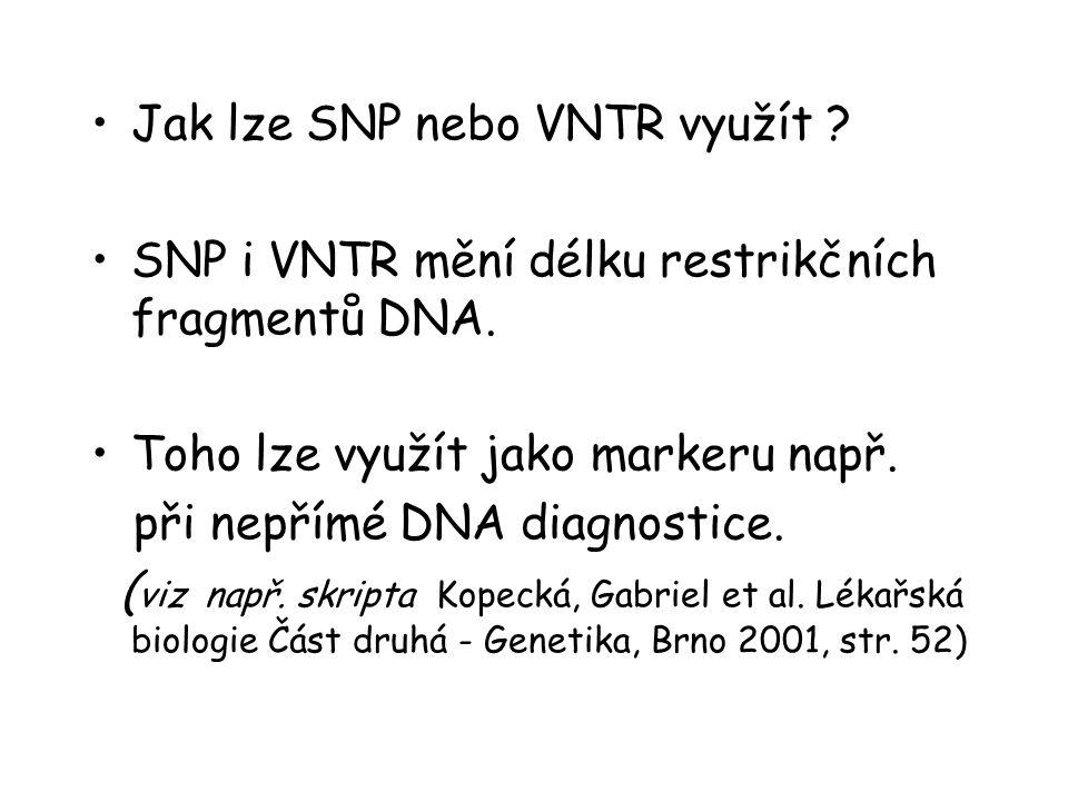 Jak lze SNP nebo VNTR využít
