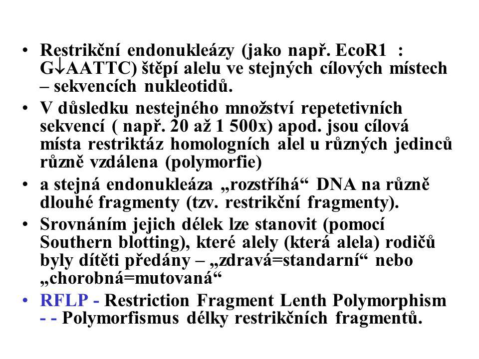Restrikční endonukleázy (jako např