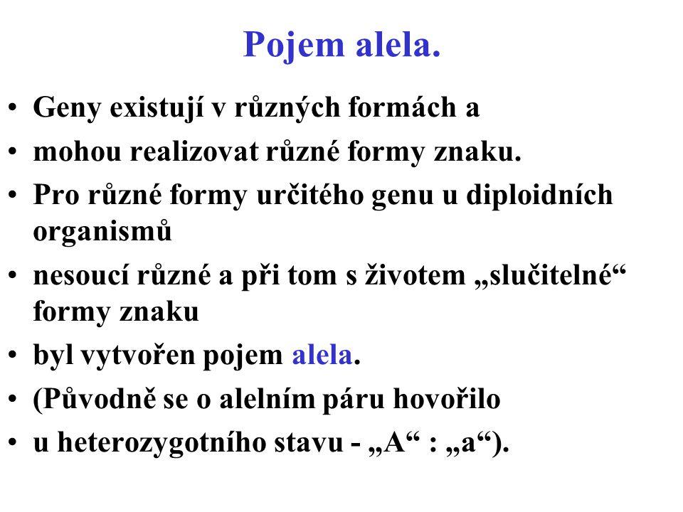 Pojem alela. Geny existují v různých formách a