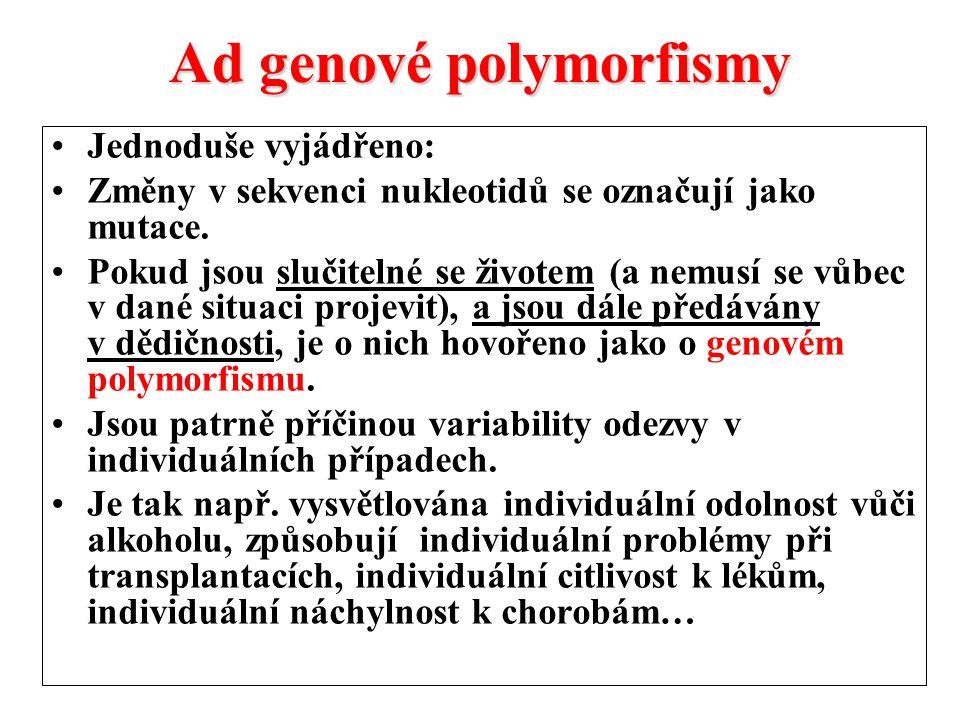 Ad genové polymorfismy