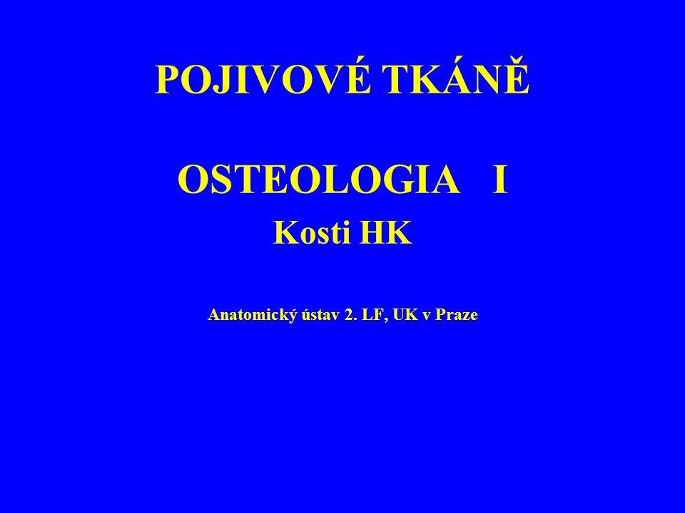 POJIVOVÉ TKÁNĚ OSTEOLOGIA I Kosti HK Anatomický ústav 2. LF, UK v Praze