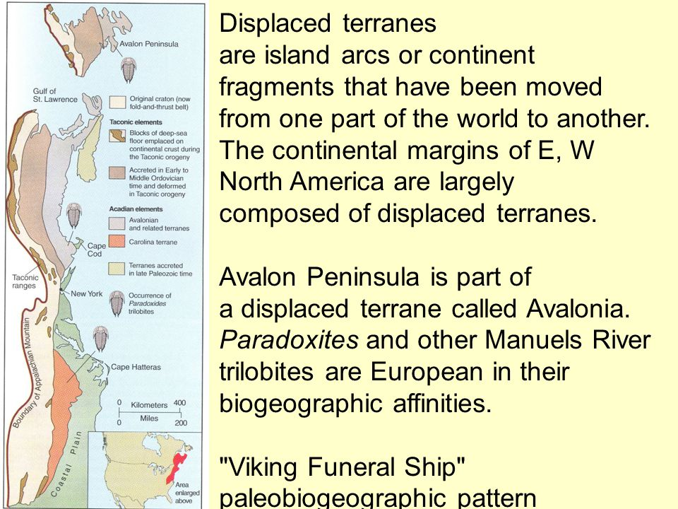 Displaced terranes are island arcs or continent. fragments that have been moved. from one part of the world to another.