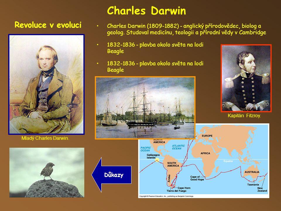 Charles Darwin Revoluce v evoluci