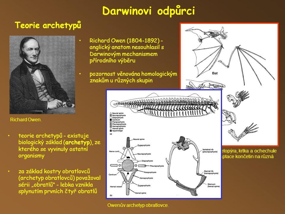 Darwinovi odpůrci Teorie archetypů