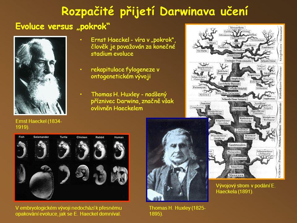 Rozpačité přijetí Darwinava učení