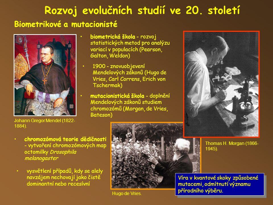 Rozvoj evolučních studií ve 20. století