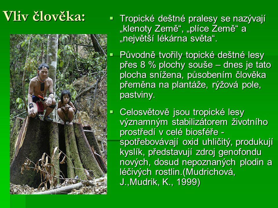 """Vliv člověka: Tropické deštné pralesy se nazývají """"klenoty Země , """"plíce Země a """"největší lékárna světa ."""
