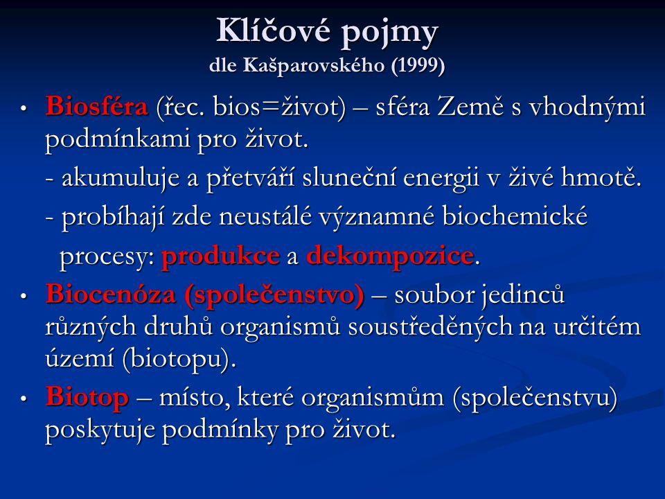 Klíčové pojmy dle Kašparovského (1999)