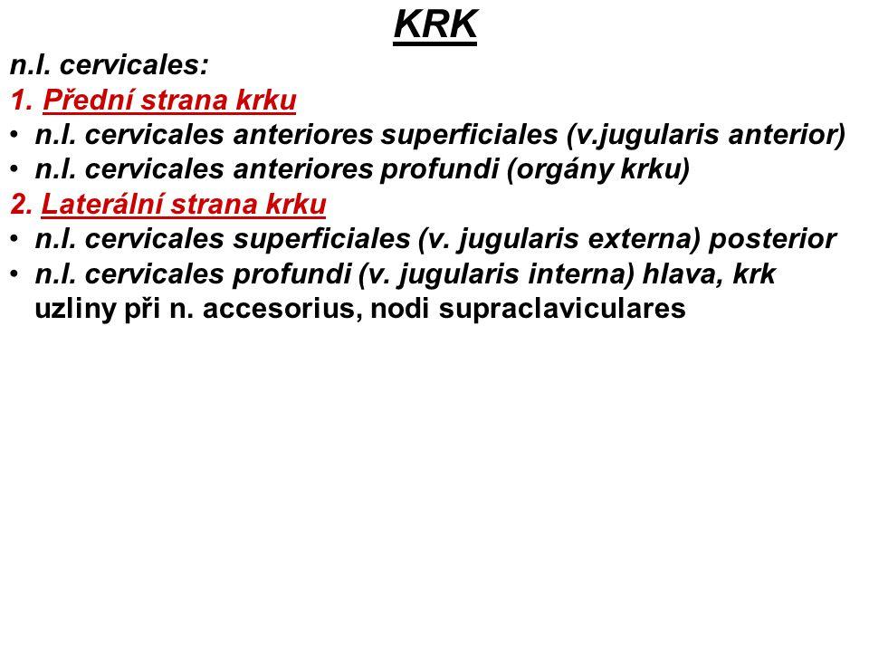 KRK n.l. cervicales: Přední strana krku