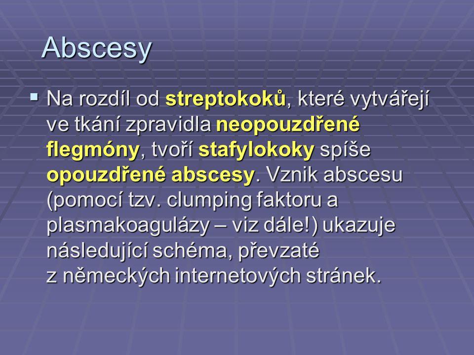 Abscesy