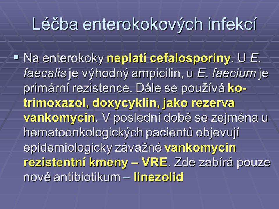 Léčba enterokokových infekcí