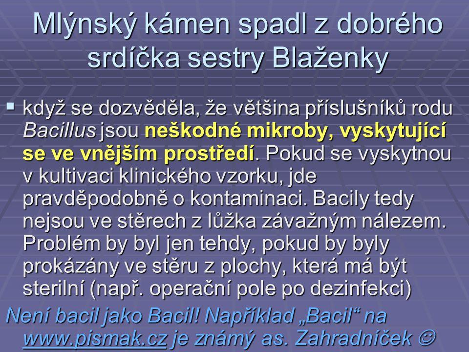 Mlýnský kámen spadl z dobrého srdíčka sestry Blaženky
