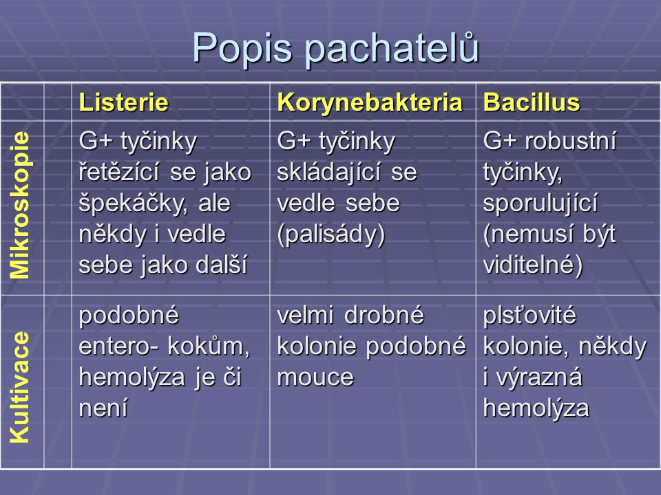 Popis pachatelů Listerie Korynebakteria Bacillus