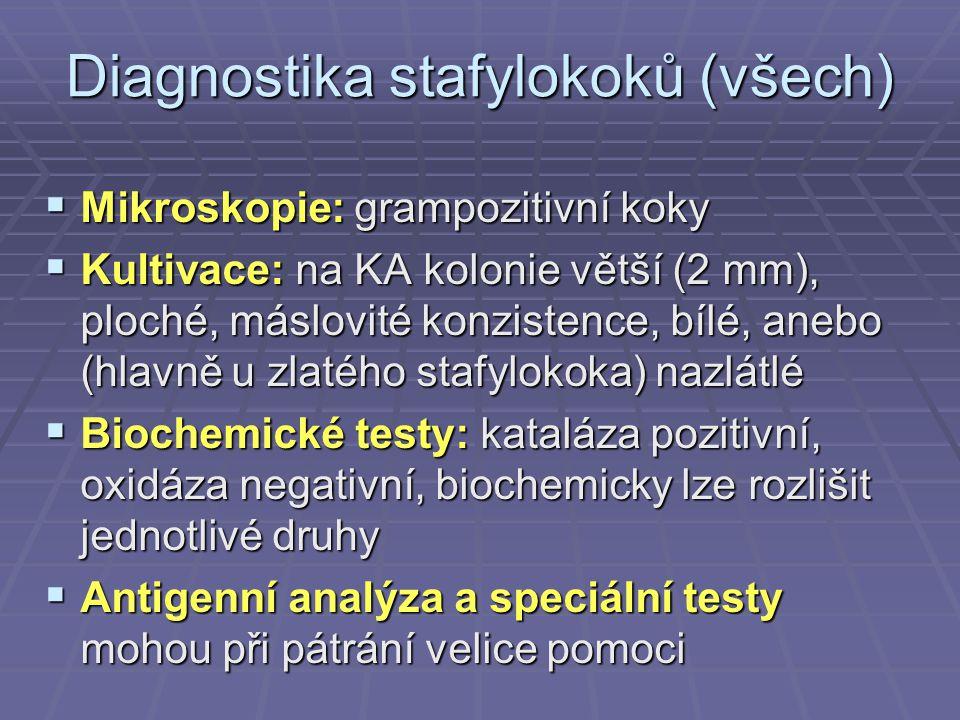 Diagnostika stafylokoků (všech)