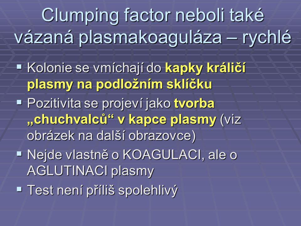 Clumping factor neboli také vázaná plasmakoaguláza – rychlé