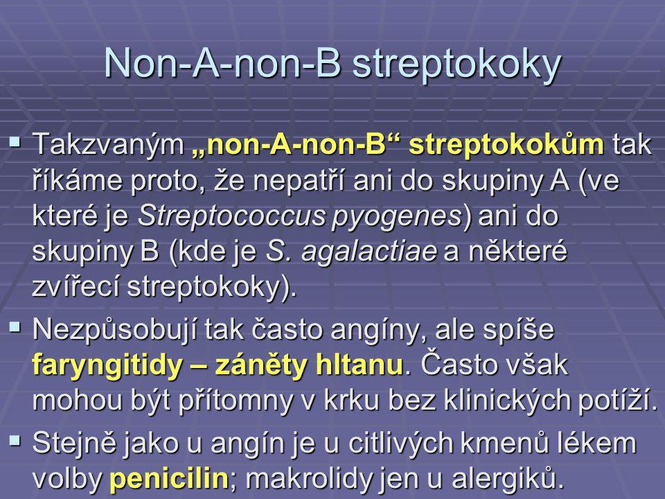 Non-A-non-B streptokoky