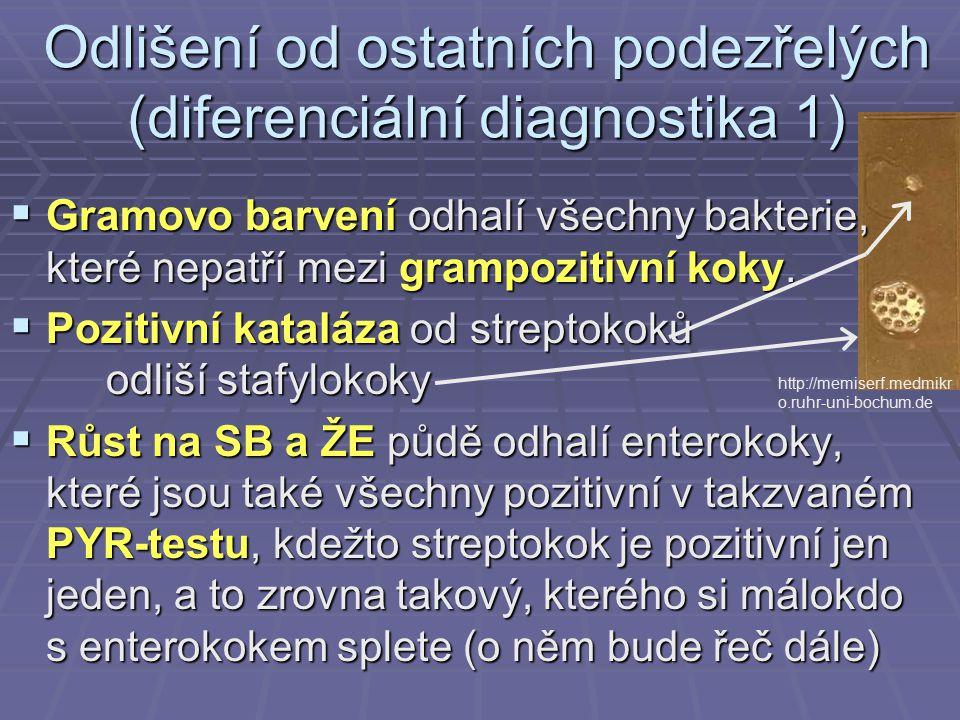 Odlišení od ostatních podezřelých (diferenciální diagnostika 1)