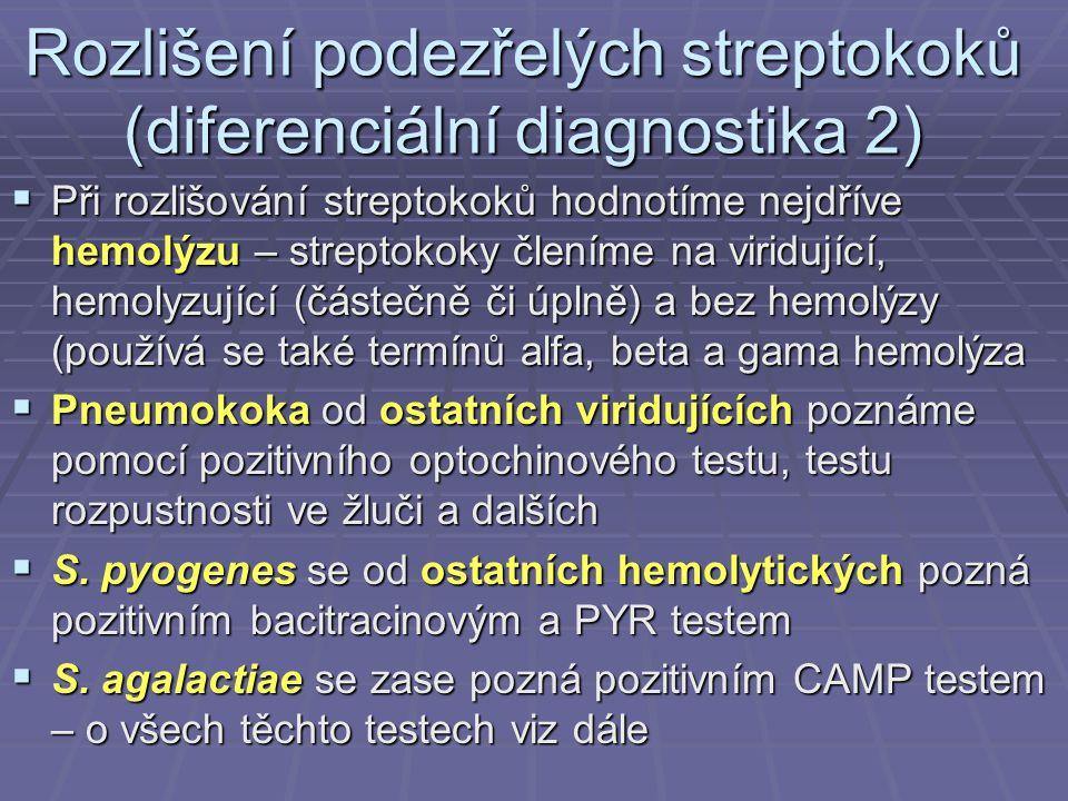 Rozlišení podezřelých streptokoků (diferenciální diagnostika 2)
