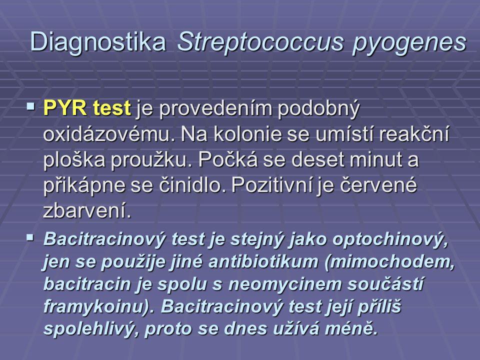 Diagnostika Streptococcus pyogenes