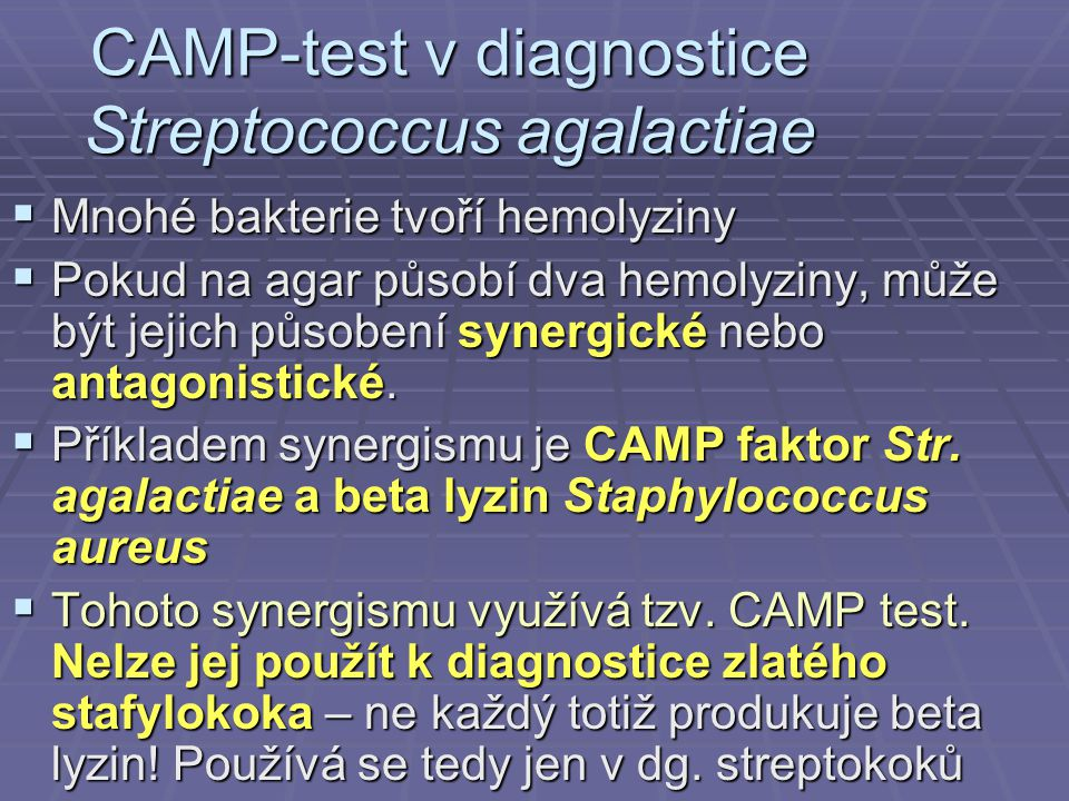 CAMP-test v diagnostice Streptococcus agalactiae