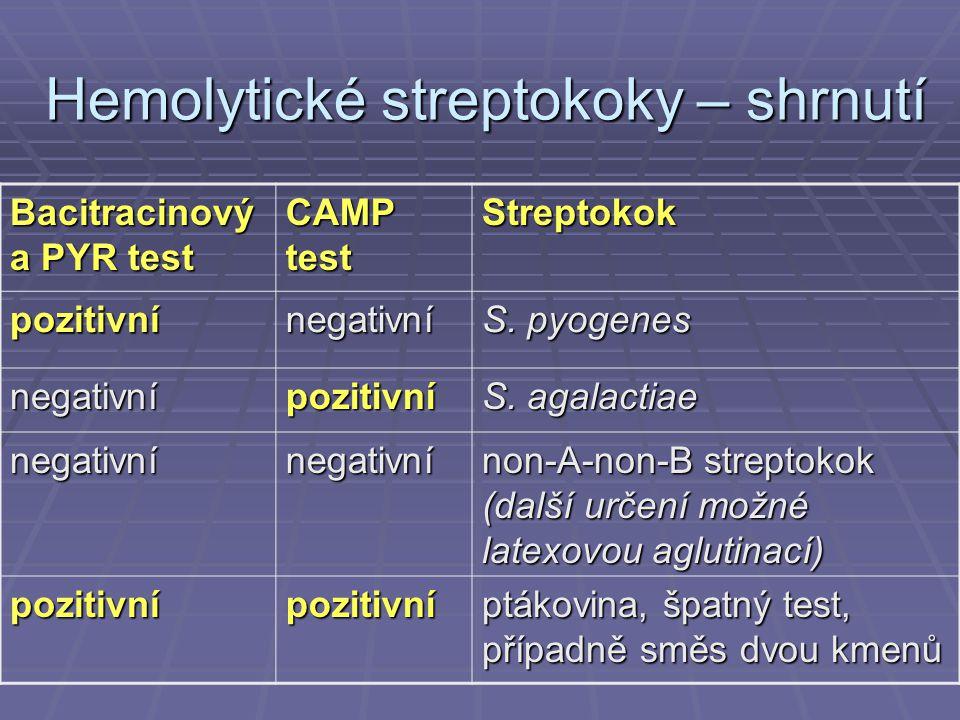 Hemolytické streptokoky – shrnutí