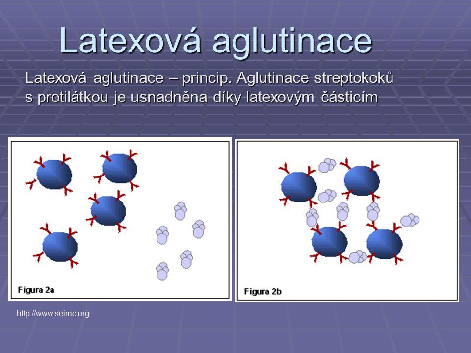 Latexová aglutinace Latexová aglutinace – princip. Aglutinace streptokoků s protilátkou je usnadněna díky latexovým částicím.