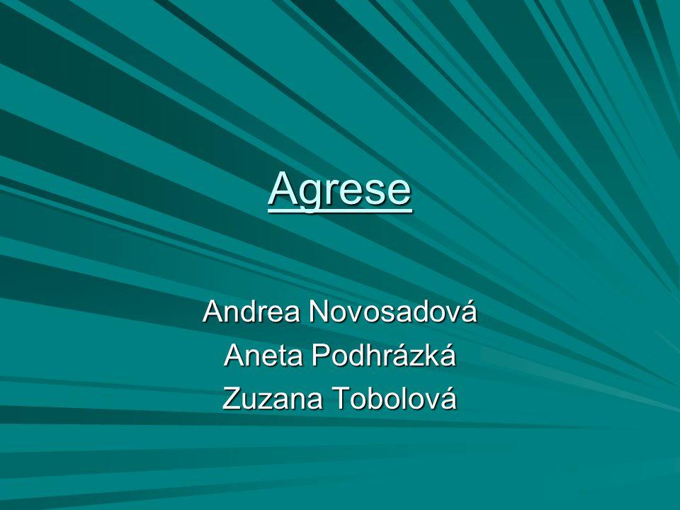 Andrea Novosadová Aneta Podhrázká Zuzana Tobolová