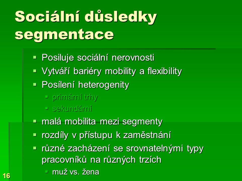 Sociální důsledky segmentace