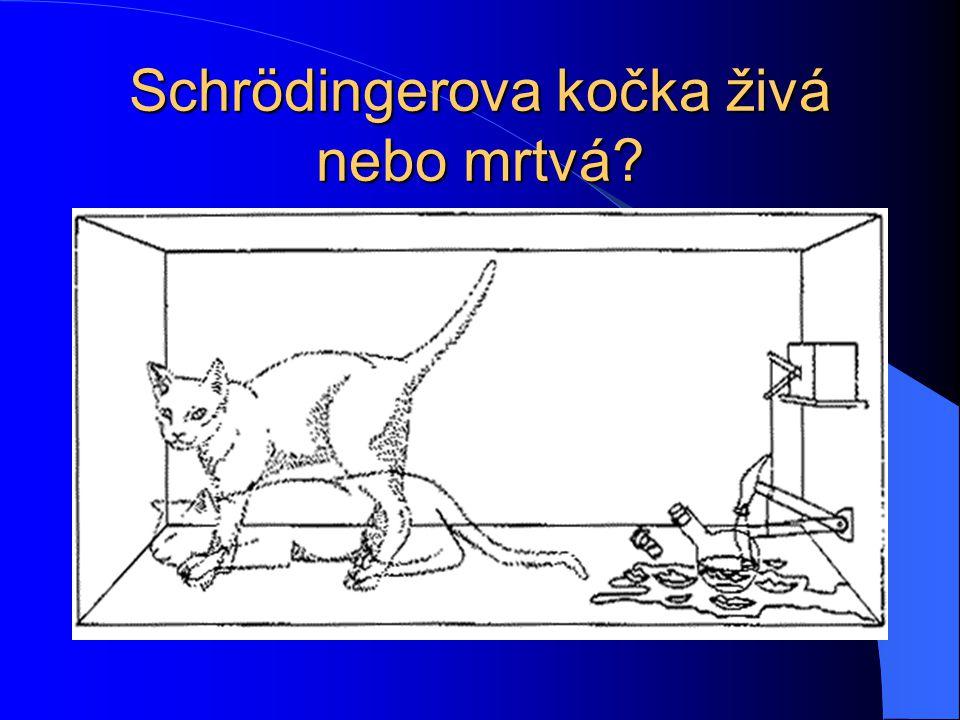 Schrödingerova kočka živá nebo mrtvá