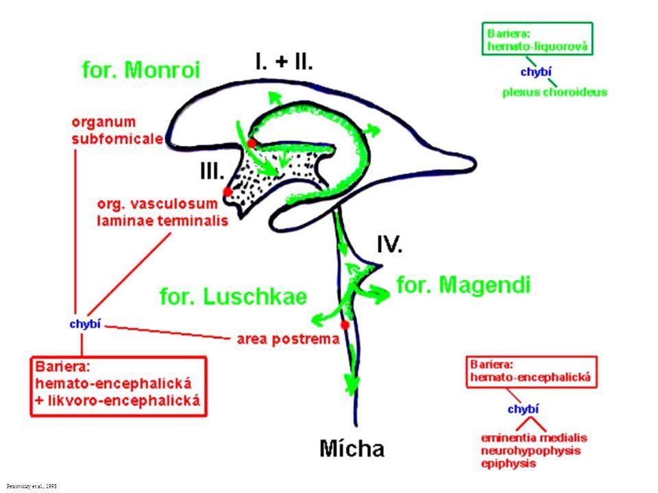 Petrovický et al., 1998
