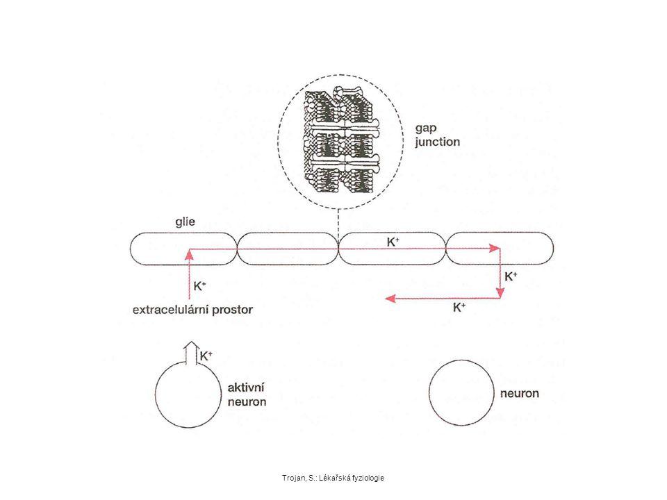 Trojan, S.: Lékařská fyziologie