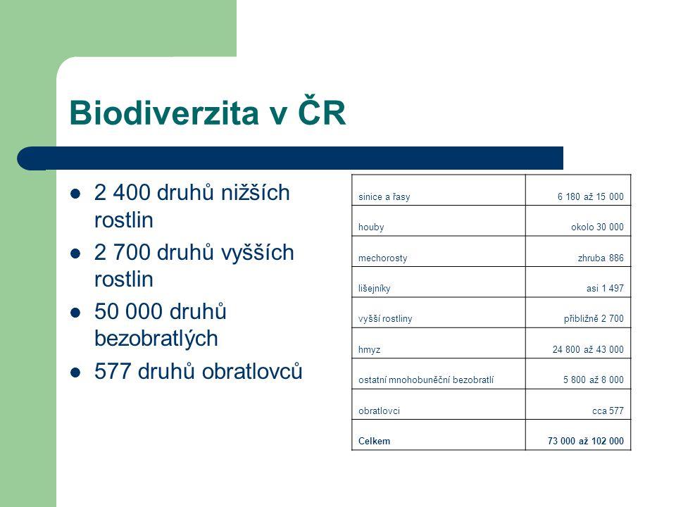 Biodiverzita v ČR 2 400 druhů nižších rostlin